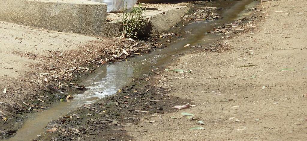Eĺ in vigore il Regolamento regionale sugli scarichi di acque reflue domestiche o assimilate alle domestiche di piccoli insediamenti
